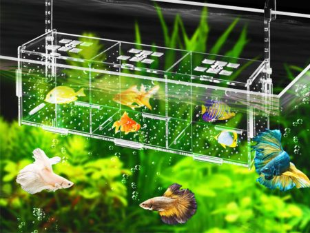 Fish Breeding Accessories