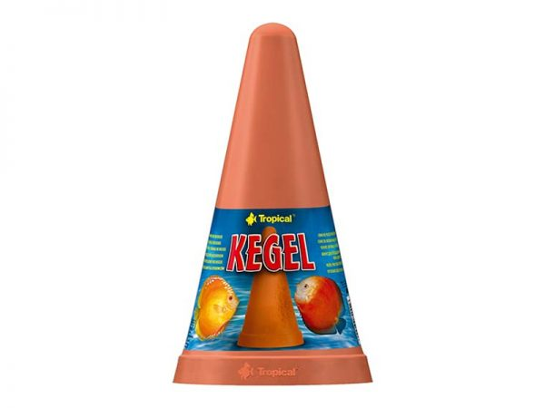Tropical Kegel Spawning Cone for Discus